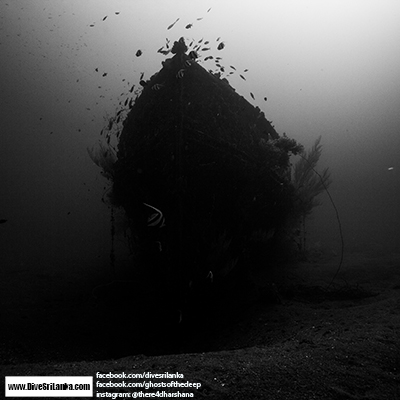 Ghosts of the Deep page VI - Black Coral Wreck